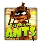 One Million Ants Free Games Slots